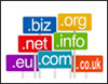 Business Domain Registration